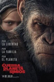 El Planeta de los Simios: La Guerra Online Completa en  Español Latino