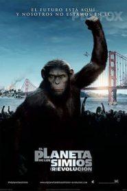 El planeta de los simios: El origen  Completa en Español Latino