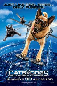 Como perros y gatos 2 (2010) Online Completa en Español Latino