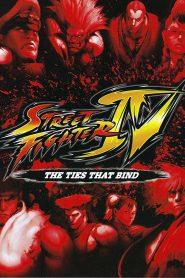 Street Fighter IV: Los lazos que unen (2009) Online Completa en Español Latino