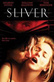 Sliver: Acosada (1993) Online Completa en Español Latino
