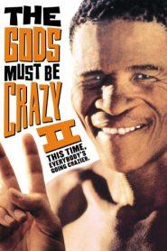 Los dioses deben estar locos 2 (1989) Online Completa en Español Latino