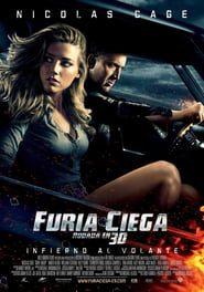 Furia ciega (2011) Online Completa en Español Latino