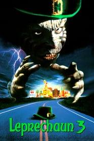 El duende Maldito 3 (1995) Online Completa en Español Latino