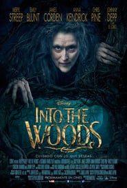 En el bosque (2014) Online Completa en Español Latino