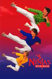 Los Tres Pequeños Ninja 2 (1994) Online Completa en Español Latino