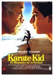 Karate Kid 1: el momento de la verdad (1984) Online Completa en Español Latino