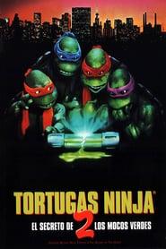 Las tortugas ninja 2: El secreto de los mocos verdes (1991) Online Completa en Español Latino