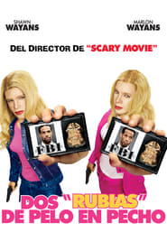 Donde están las rubias (2004) Online Completa en Español Latino