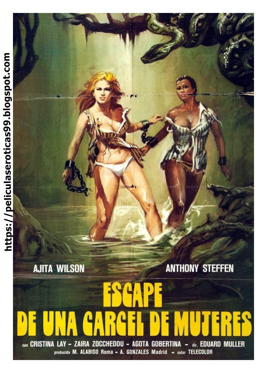 El infierno de las mujeres Online (1980) Completa en Español Latino
