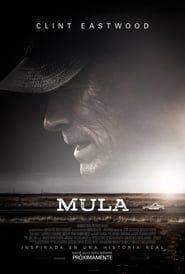 Mula Online (2018) Completa en Español Latino
