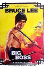 Kárate a muerte en Bangkok Online (1971) Completa en Español Latino