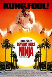 Un Ninja En Beverly Hills Online (1997) Completa en Español Latino