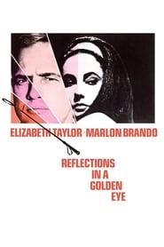 Reflejos en un ojo dorado Online (1967) Completa en Español Latino