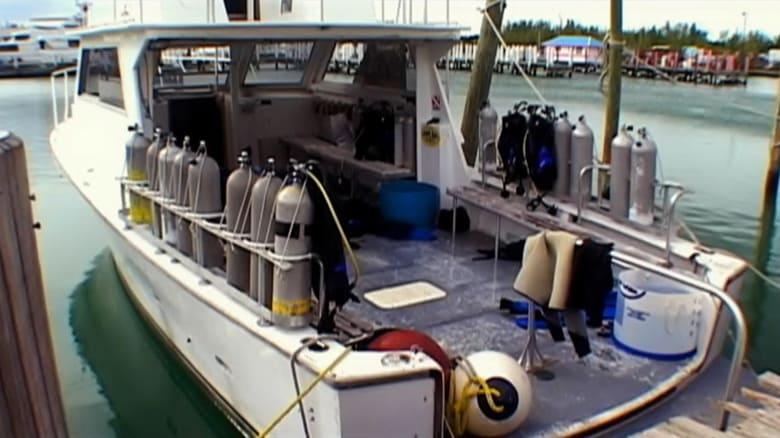 Mar abierto Online (2003) Completa en Español Latino