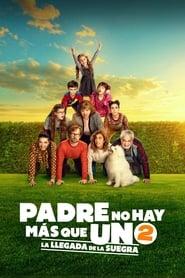 Padre no hay más que uno 2: La llegada de la suegra Online (2020) Completa en Español Latino