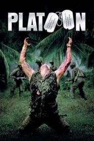 Pelotón Online (1986) Completa en Español Latino