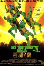Las tortugas ninja 3 Online (1993) Completa en Español Latino