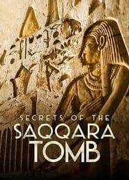 Los secretos de la tumba de Saqqara Online (2020) Completa en Español Latino